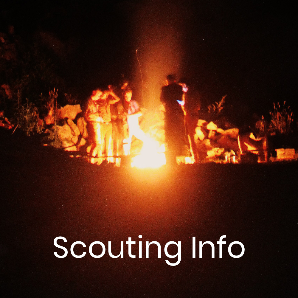 Scouting Info